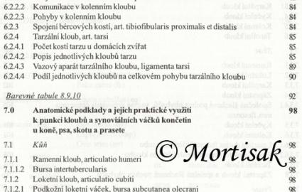anatomie-synovilnch-tvar-konetin-kon-psa-skotu-a-prasete-pro-studium-a-praxi-3