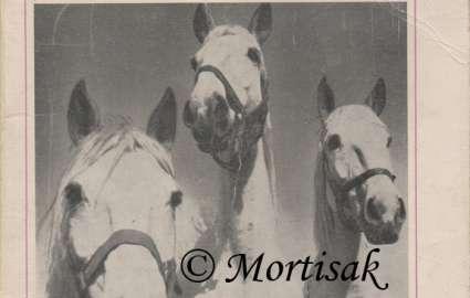 Chov koní vybrané kapitoly I. část.jpg