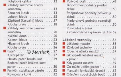 fyzioterapie-1
