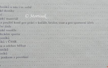jezdectv-a-dostihov-sport-3