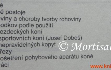 jzda-na-koni-3