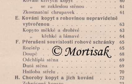 podkovsk-zrcadlo-2