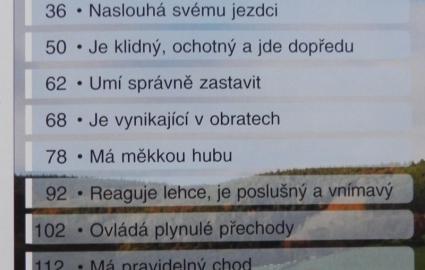 vcvik-jezdeckho-kon_0