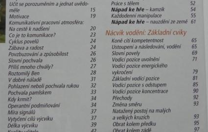 vcvik-kon-podle-bey-borelle-1