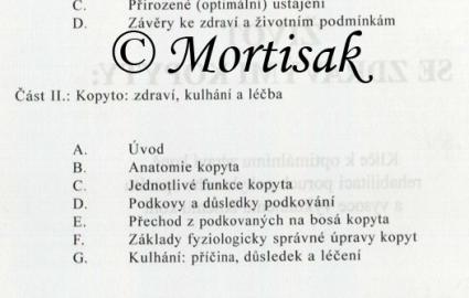 ivot-se-zdravmi-kopyty_0