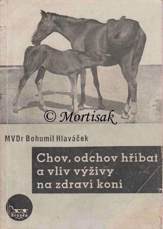 Chov-odchov-hříbat-a-vliv-výživy-na-zdraví-koní