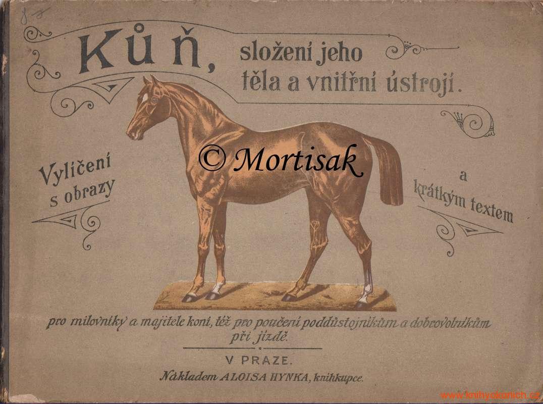 Kůň-složení-jeho-těla-a-vnitřní-ústrojí.jpg