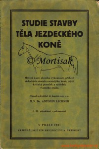 Studie-stavby-těla-jezdeckého-koně