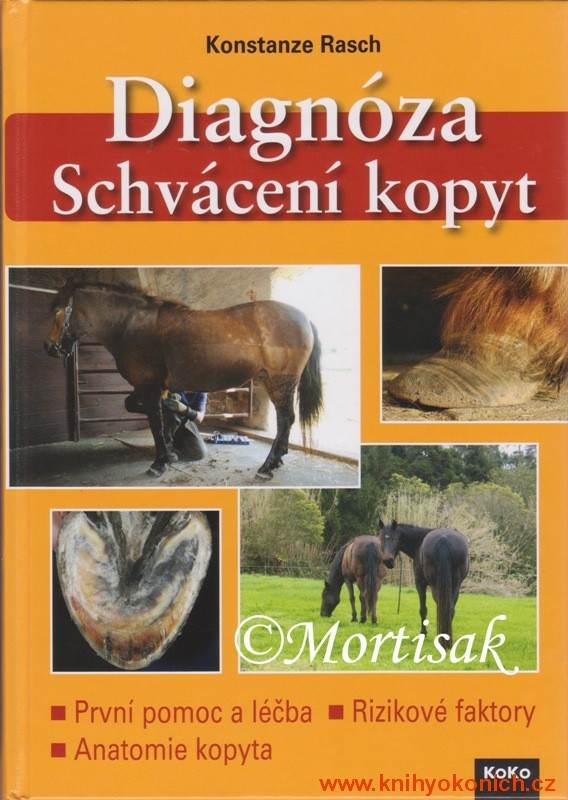 diagnza-schvcen-kopyt