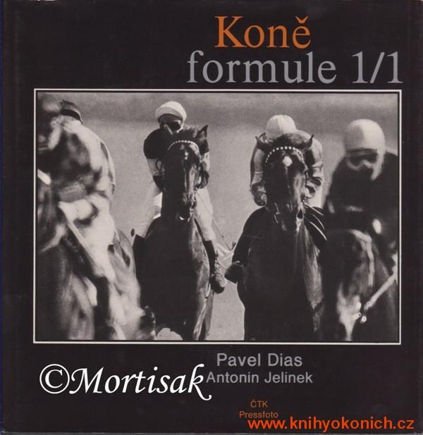 kon-formul-1-1